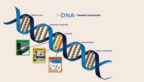 Seaman Corporation DNA
